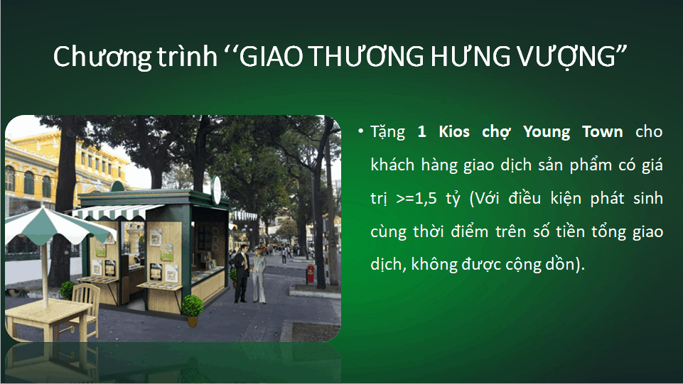 du an young town tay bac sai gon thang loi group 5